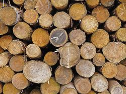 Logs Leeds