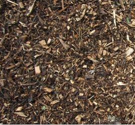 wood chip