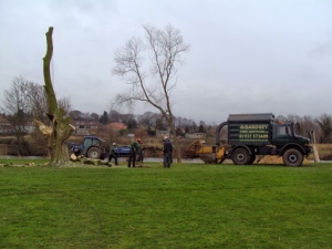 Tree Surgery Leeds, Wetherby, Harrogate
