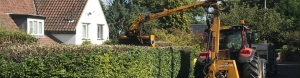 hedge cutting leeds, harrogate wetherby, tadcaster