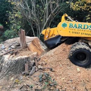 stump grinding in Harrogate
